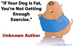 """""""If Your Dog Is Fat, You're Not Getting Enough Exercise."""" - Your dog is your scale ... Walk your dog!!!  :)       - gym humor, funny, LOL, jokes, fitness humor, fun. - If you like this pin, repin it and follow our boards :-)  #FastSimpleFitness - www.facebook.com/FastSimpleFitness"""