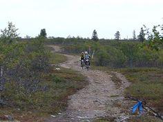 Saariselkä MTB 2013, XCM (34) | Saariselkä.  Mountain Biking Event in Saariselkä, Lapland Finland. www.saariselkamtb.fi #mtb #saariselkamtb #mountainbiking #maastopyoraily #maastopyöräily #saariselkä #saariselka #saariselankeskusvaraamo #saariselkabooking #astueramaahan #stepintothewilderness #lapland