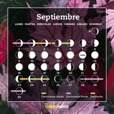 Calendario lunar de septiembre Big Chop, My Hair, Salons, Hair Cuts, Hairstyle, Makeup, Tips, Beauty, Paganism