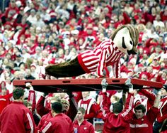 Bucky does pushups...194 in the first 4 games of the season!! (Allowing only 34 points against)