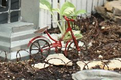 www.WeeTrees.com.... unique items for fairy garden and miniature landscapes... to check out asap!!