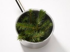 How To Make Pine Syrup : Recipes and Cooking : Food Network