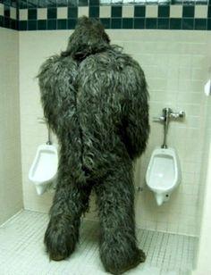 Bigfoot on Pinterest | Bigfoot Sightings, Costumes and Action Figures