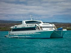 Tips for Booking a Galapagos Islands Cruise, in photos