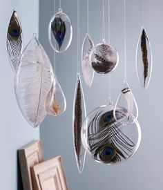 feathers in glass spheres