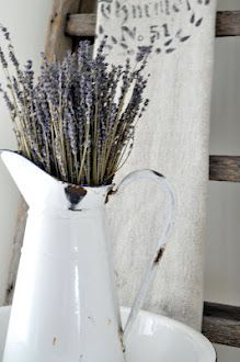 Pitcher filled with fresh lavender.