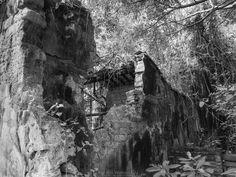 郊野 | 荒廢 | 歷史 Old houses in the countryside  榕樹凹 Yung Shue Au 2017/01/17