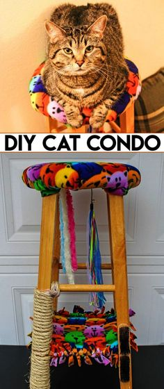 Amazing... Pictures Of Cats And Kittens To Draw #facebook Cool Cats, Cool Cat Toys, Diy Jouet Pour Chat, Homemade Cat Toys, Diy Cat Tree, Cat Trees Diy Easy, Cat Hacks, Cat Diys, Interactive Cat Toys