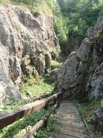 Úrkút egy Ajkától 10 km-re fekvő kis község. Legfőbb nevezetessége a településről Városlődig vezető 6,2 km hosszú Erdei tanösvény, amely 2... Beautiful World, Beautiful Places, Heart Of Europe, Budapest Hungary, Holiday Destinations, Hiking Trails, Holiday Travel, Places To See, Scenery