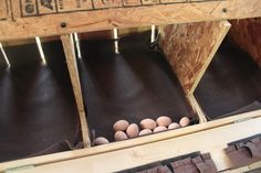 easy to clean nesting boxes | Above: 10 eggs in one next box (I have a lot of girls fixing to start ...