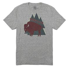 Grand Teton Park Crew Tee Park Project's motto is to promote, protect, and preserve our national parks.Each collection of quality goods is made with purpose & helps support projects in our parks.  Help promote this great cause while looking stylish in this tee!   Made from soft and breathable materials-50% Cotton, 25% Polyester & 25% Rayon. Slim fit. Made in the USA.   NWT-Retail-Never been worn or tried on!  Price is firm, unless bundled Like more than one item? Ask me about bundling…