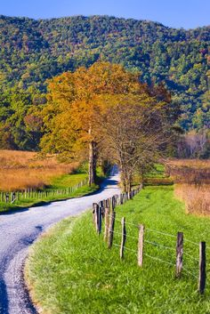 May 2020 - Gorgeous view of Cades Cove in the Great Smoky Mountains. See more ideas about Cades cove, Great smoky mountains and National parks. Smoky Mountain National Park, Cades Cove, Great Smoky Mountains, Beautiful Places To Visit, Amazing Places, Landscape Photography, Photography Tips, Nature Photography, Destinations