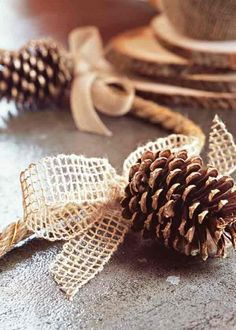 Pinecone decoration - featured as a Thanksgiving craft, but the burlap bows would be a lovely compliment  to a country or rustic Christmas theme