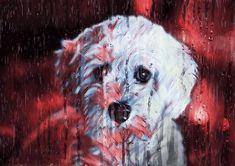 Sad Puppy Rainy Animation Royalty Free Stock Photos, Sad, Animation, Puppies, Animals, Fictional Characters, Cubs, Animales, Animaux
