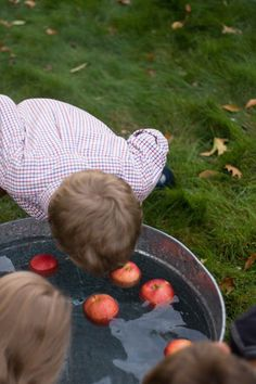 Wonderful Life Farm: Tips for Planning A Harvest Party
