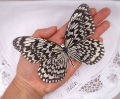 Hand Cut silk butterfly hair clip  Large Monochrome by flutter2me