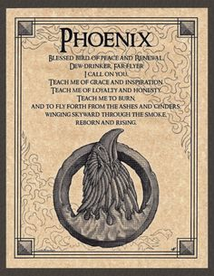 Phoenix for the Air (E) pole Witchcraft Spell Books, Wiccan Spell Book, Magick Spells, Pagan, Spiritual Animal, Spiritual Life, Animal Spirit Guides, Spirited Art, Mythological Creatures