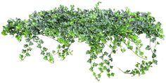 Gify,animacja,obrazki PNG: Zielono i wiosennie