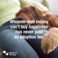 So true. Pets bring happiness to a house. (Sometimes havoc too!)