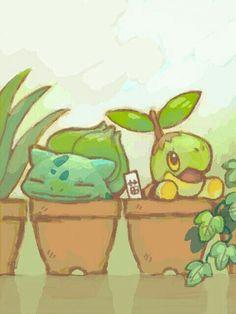 Bulbasaur, Turtwig, funny, pots, plants, text, cute, sleeping; Pokémon