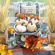 Good morning!!! Is starting to feel like fall!! Sharing my favorite @decorsteals tiered tray for #tuesdaytraychic. Also for #vivalavignettetuesday #thedesigndiamonds #wowusweekdays #pumpkinspiceandstylingnice #harvesthometuesday. Have you shared @un.de.once @califgirl42?  #ourgratefulhome #seasonsofsimplicity  #tuesdaytablelove #IKEAfarmhouse  #interiorswag  #naturelovetuesday #mycupofjojo #sharemysquare  #farmhouse #mybhg #countrylivingmag #rustneverliestuesday (rusty bench and table)…