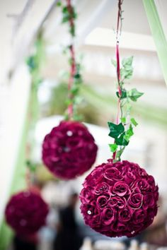 Hanging Maroon Rose Pomander Backdrop!