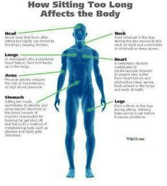 Sitting for too long could cause more than just back pain; from blood clots to colon cancer, sitting for extended periods of time can be seriously detrimental to your health! See these 7 sitting-related health risks, and how to avoid them. Health And Nutrition, Health Tips, Health And Wellness, Health Fitness, Nutrition Guide, Men Health, Holistic Wellness, Nutrition Program, Men's Fitness