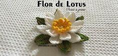 Flor de Lotus passo a passo