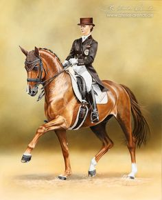 Dressage Horse Blind-Date and V. Max-Theurer by AtelierArends on DeviantArt