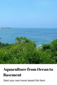 #Aquaculture can be done anywhere at any scale, from oceans, lakes, ponds, to…
