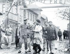gate of auschwitz picture   gate-liberation-of-auschwitz-by-red-army,armatarossa,liberazione