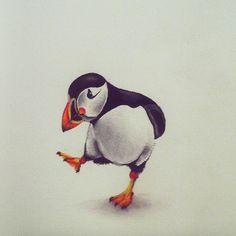 Puffin Toddle.  #wildlife #art #illustration #puffin #birds