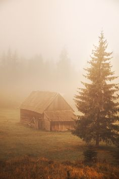 Cabin on the field photo by on Envato Elements Fields, Cabin, House Styles, Photography, Inspiration, Ideas, Biblical Inspiration, Photograph, Cabins