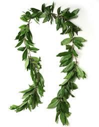 Almost everyone who gets married in Hawaii includes the flower garlands known as lei as a part of the wedding ceremony. Lei are a symbol of love, respect, and all-around aloha with the bride and groom exchanging lei.  The groom usually wears a garland of manly green maile leaves (sometimes with small white flowers, called pikake, woven in). In a traditional Hawaiian wedding ceremony, the kahuna pule, or holy man, would bind the couple's hands together with a maile lei