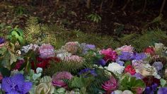 Salondeviola 森の中に咲く花 撮影場所:東京都世田谷区のサロン