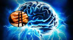 Subhanallah!! Sungguh Luar Biasa ! Inilah 11 Kesan Getaran Zikir Kepada Otak Manusia Subhanallah!! Sungguh Luar Biasa ! Inilah 11 Kesan Getaran Zikir Kepada Otak Manusia Otak hanyalah aktiviti-aktiviti bio-elektrik yang melibatkan sekumpulan saraf yang dipetanggungjawabkan untuk melakukan tugas-tugas tertentu bagi membolehkan ia berfungsi dengan sempurna. Setiap hari 14 juta saraf yang membentuk otak ini berinteraksi dengan 16 juta saraf tubuh yang lain. Semua aktiviti yang ita lakukan dan…