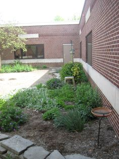 "Heather is a parent fr University Elementary School in Bloomington, IL. ""The cafeteria staff has agreed to make use of anything grown in the garden. We have the chance to get real, fresh food in the mouths of more children across the school. The availability of delicious, fresh herbs and vegetables grown by fellow students will encourage children to broaden their eating. Once children analyze the differences in the fresh produce, it will steer them toward fresh options."" #diggingdeeper"