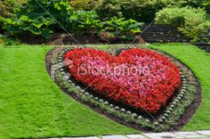 Heart shaped flower bed Royalty Free Stock Photo