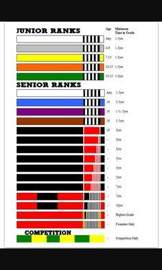 The belts of jiu-jitsu Martial Arts Belts, Best Martial Arts, Judo, Brazilian Jiu Jitsu Belts, Boxe Mma, Karate Shotokan, Jiu Jutsu, Kids Bjj, Jiu Jitsu Training