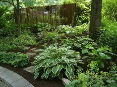 shade garden  hosta, astilbe, epimedium, ferns, lady's mantle, and other perennial flowers.