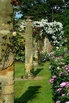 stupendous garden archway. Rose Gardens at Hever Castle  in the village of Kent England UK arch arches overgrown garden bench column columns greek ancient