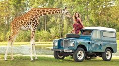 Women posing with giraffe on Land Rover ★ App for Land Rover Warning Lights, is now in App Store. App info website: Carwarninglight.com