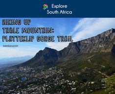 Hiking Up Table Mountain · Bee Du Jour