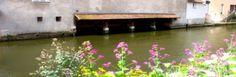 Canale fiorito