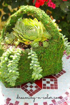 succulent purse centerpiece