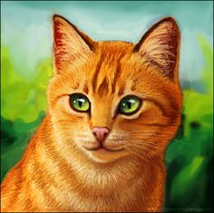 pictures of warrior cats | My Warrior Cats Pictures: Firestar!!