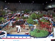 'Garden in a Wheelbarrow' entries - only one of the exhibits at the Sacramento County Fair. http://exm.nr/KCTrMi #examinercom