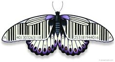 Barcode freedom - artwork by James Marsh