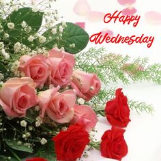 Happy Wednesday, Good Morning Quotes, Beautiful Roses, Flowers, Plants, Plant, Royal Icing Flowers, Flower, Florals