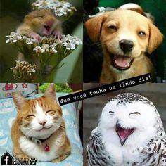 Sorria!!!!!